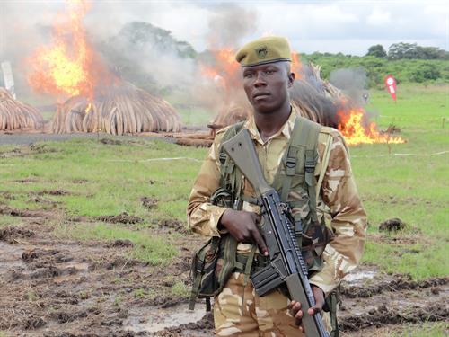 2 bracconaggioafrica