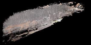 FOTO D - Ricostruzione 3d   dal drone