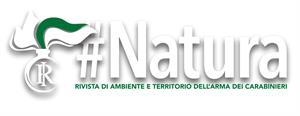 Rivista di ambiente e territorio dell'Arma dei Carabinieri