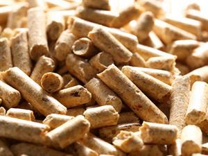 Biomasse-legnose_05