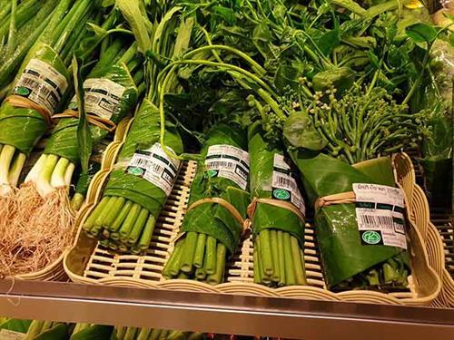 foglie_banana_packaging1