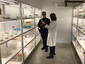 CNCB Pieve S. Stefano: laboratorio colture in vitro