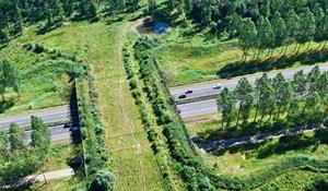 infrastruttura verde