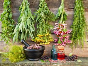 piante-officinali
